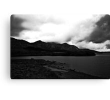 Ireland in Mono: Love Never Grows Old Canvas Print
