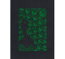 Mister Peacock - Green Photographic Print