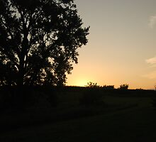 Country sunset silhouette by bsorenson