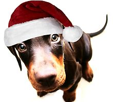 Merry Christmas From Dolly Doberman by Ladymoose