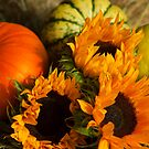 Sunflowers n Pumpkins - still life by Daisy-May
