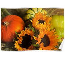 Sunflowers n Pumpkins - still life Poster