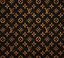 Louis Vuitton the case by hiddenfate
