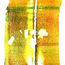 Sunset Lake Champlain Summer Fall 2012 5b by Nadia Korths