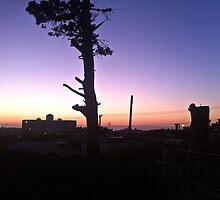 view from my window by Marina Wainwright