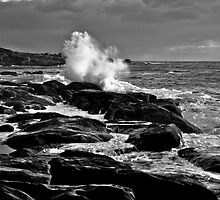 Rocky Shores II by Miles Moody