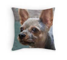 A Close Shave! Throw Pillow