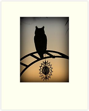 Great Horned Owl ~ Sunset Silhouette  by Kimberly P-Chadwick