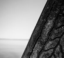 Weathered Old Tire by Tim Trott