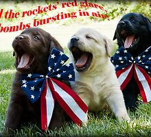 4th of July Trio! by DennisThornton