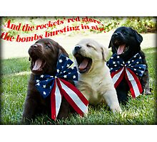 4th of July Trio! Photographic Print