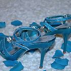 They are NOT Cinderella's Slippers by Sherry Hallemeier