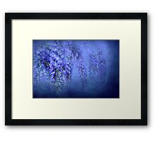 """""""In Love with WIsteria..."""" Framed Print"""