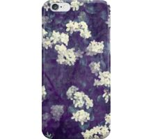 Evening's Veil  iPhone Case/Skin