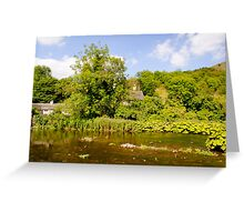 The River Wye at Upperdale  Greeting Card