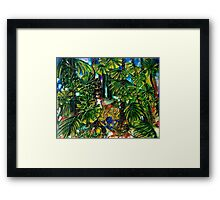 Bower Bird Framed Print