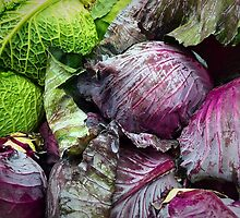 Cabbage by umeimages