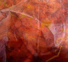 TRACES TELL.. by laureen warrington