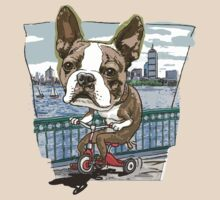 Boston Terrier Riding Red Tricycle by MudgeStudios