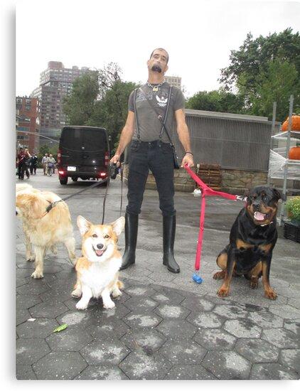 dog walker by BOBBYBABE