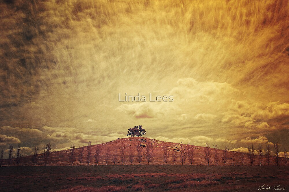 Two Tree Hill by Linda Lees