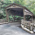 Mill Creek Covered Bridge by Monnie Ryan