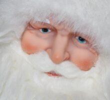Santa Face Sticker