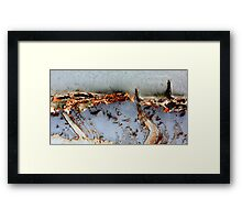 Blizzard Framed Print