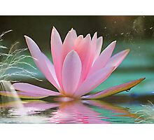 Fantasy Lotus Photographic Print