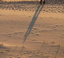 Beach Wedding by Deidre Piechocki
