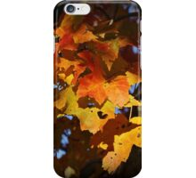 Shadow Color iPhone Case/Skin