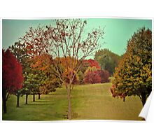 Nature coloring trees Grundgy Style Poster