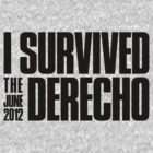 I Survived the June 2012 Derecho by fatdogcreatives