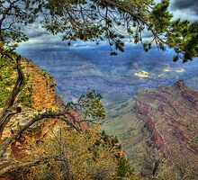 Canyon View by Diana Graves Photography