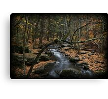 Childs October Canvas Print