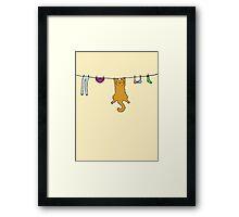 Wet Washing Cat Framed Print