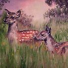 Mother and baby deer by Stan  Brookfield
