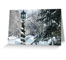 City Hall Park in Snow, New York Greeting Card