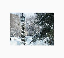 City Hall Park in Snow, New York T-Shirt