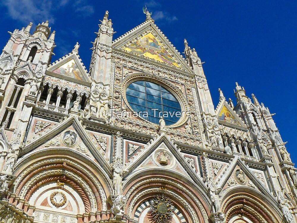 Duomo di Siena by Tamara Travers