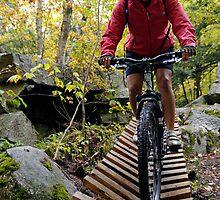 Biking Down the Bridge by Stephen Beattie
