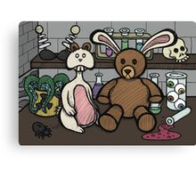 Teddy Bear and Bunny - Lab Experiments 2 Canvas Print