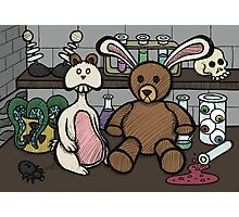 Teddy Bear and Bunny - Lab Experiments 2 Photographic Print