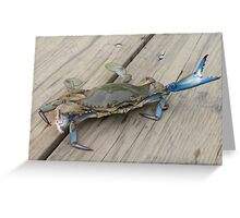 Blue crab, view 1 Greeting Card