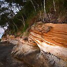 Earthly Colours II - Sandstone Point  by Barbara Burkhardt