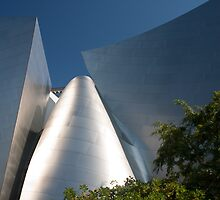 Walt Disney Concert Hall by zzsuzsa