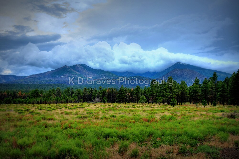 Clouds Over The Meadow by Diana Graves Photography