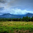 Clouds Over The Meadow by K D Graves Photography