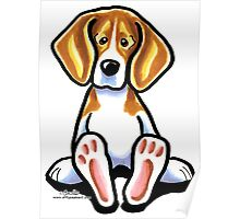 Big Feet Beagle Poster
