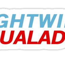 Nightwing Aqualad 2012 Sticker